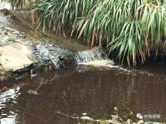 株洲荷塘区农灌水渠污染源锁定 生态环境部门介入调查