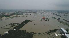 台湾2019年均温破纪录 专家:气候紧急
