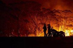 走向失控的四个月:澳洲大火缘何肆虐?一个恶性循环的