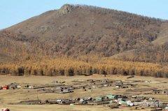 旱地不是荒地――首次世界干旱地区树