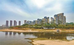标本兼治 建管并重 深圳市观澜河全流