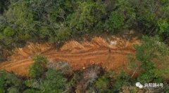 农夫山泉涉嫌在国家公园毁林取水?官方回应:已立案调