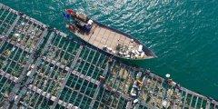 """""""厦门模式""""是中国海洋塑料治理的未"""