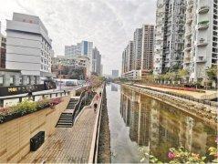 深圳市罗湖区5个黑臭水体7个小微黑臭