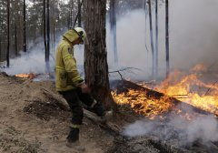 澳大利亚大火已排放二氧化碳约4亿吨
