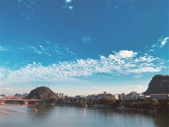 柳州市生态环境局以全新面貌开展工作一年的