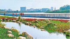 深圳市宝安区水污染治理工作会议召开,全面