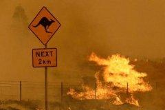 森林大火逼近 堪培拉进入紧急状态