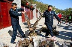 王毅 | 人大常委会决定与野生动物保护
