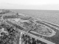 153公里生态海岸 让天津既有临海之名又有亲海之实
