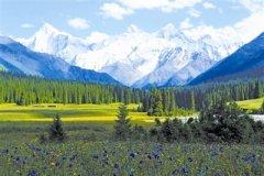 草原生态保护修复要合理利用水资源