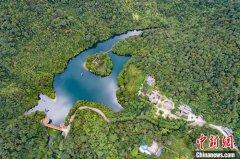 广东森林蓄积量达5.79亿立方米 将系统推进生态修复