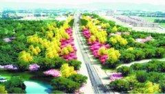 京张高铁沿线年底添绿超9000亩