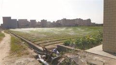 推进节水型城市建设 广州将这么干
