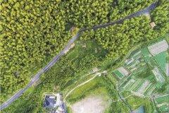 人与自然和谐共生:从余村样本到中国