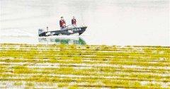 为有效增加长江鱼类资源数量 重庆今年已搭建6万多平方米人工鱼巢