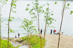 重庆:从聚焦水污染防治到实现水岸同