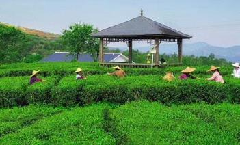 香港成立绿色和可持续金融跨机构督导小组