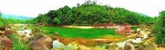 鹅凰嶂自然保护区加大投入守护生物多样性宝