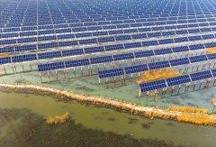 疫情难阻中国推动可再生能源平价决心