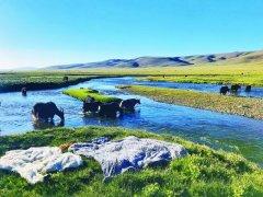 青藏高原保护 不仅是环境问题