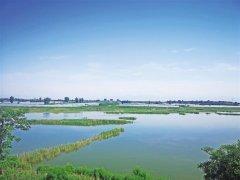 野草青青 鸟鸣啾啾――陕西省湿地保护