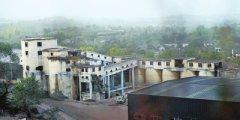 废置宿舍楼变身食用菌种植基地 一个关闭矿井的逆袭
