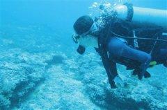 """黄晖:聚""""礁""""三亚 守护好蓝色的""""海底花"""