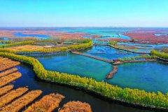 构建现代环境治理体系 为建设美丽中国提供有力制度保