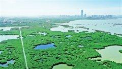 环保笔谈:黄河宁 天下平 要下好保护和发展