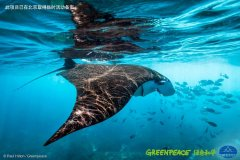 守护海洋:中国的6个各具特色的海洋保