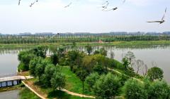 郑州市召开环境污染防治攻坚战第八次