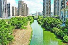 恢复河流生态 提高防洪能力 阳江市城