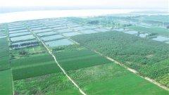 郑州郑东新区252个黄河生态问题点位整
