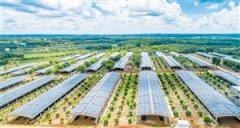 海口市琼北生态循环农业产学研示范基地揭牌