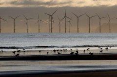 2020年上半风力和太阳能占全球发电量10% 创历史新高