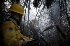 亚马逊大火再燃背后的变与不变