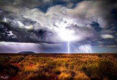 解锁自然的力量|减缓气候变化