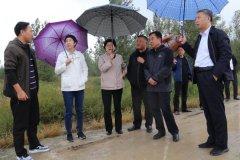 内蒙古自治区生态环境厅党组书记杨��