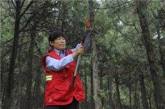 """杨德菊:冲锋在前的林业科技""""铁姑娘"""""""