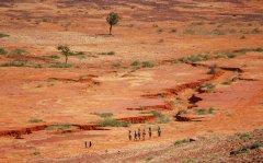 疫情后经济复苏关键 非洲11国部长筹资