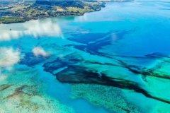 1000吨原油泄漏之后,毛里求斯的海洋生态怎么样了?
