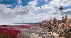 营口团山国家级海洋公园生态修复项目在全国
