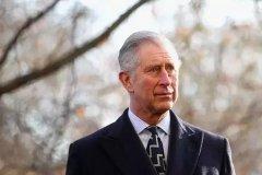 呼吁各界迅速行动 英王储:气候变化影响大于疫情
