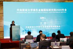 中央财经大学绿色金融国际研究院2020