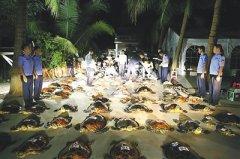 海南警方破获特大非法收购、运输、出售珍贵