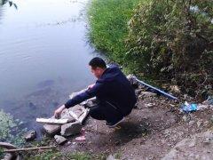 安徽省生态环保督察组在芜