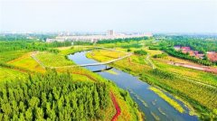沧州出台大运河文化带规划建设实施方案 大