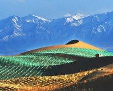 中国是如何打造绿水青山的?