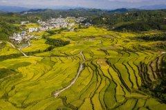 农村环境治理,环保产业的新蓝海该如